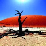 Долго будет Намибия сниться